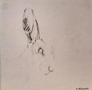 Sys Hindsbo. Original blyantstegning fra skvalderkål, 19 x 19 2200 kr.